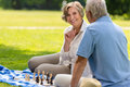 Senior wife and husband playing chess outdoors on blanket summer park Royalty Free Stock Images