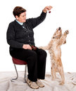 Senior woman feeding spaniel on a white background Royalty Free Stock Photo
