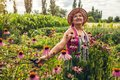 Senior Woman Gathering Flowers...