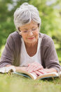Senior woman reading a book at park Stock Photography