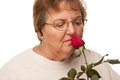 Senior Woman with Red Rose Royalty Free Stock Photo