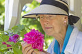 Senior woman smelling roses a horiztontal picture of a aged wearing a sunhat with a peaceful smile while pink Stock Images