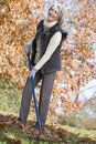 Senior woman tidying autumn leaves Royalty Free Stock Images