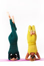 Senior and younger woman practice yoga women women headstand pose studio shot Stock Photo