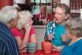 Seniors in Conversation Royalty Free Stock Photo