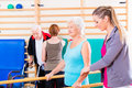 Seniors in physical rehabilitation therapy with trainer Royalty Free Stock Photo
