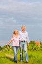 Seniors in summer walking hand in hand man and woman senior couple having a walk or outdoors the vineyard Royalty Free Stock Photo