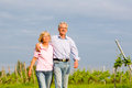Seniors in summer walking hand in hand man and woman senior couple having a walk or outdoors the vineyard Royalty Free Stock Images