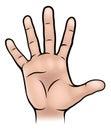 Hand Body Part