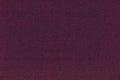 Sensor noise when using high iso settings on camera color Stock Image