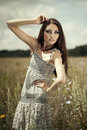 Sensual woman in field Royalty Free Stock Image