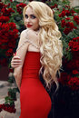 Sensual woman with long blond hair in luxurious red dress fashion outdoor photo di gorgeous posing rose s garden Stock Image