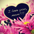 Sentence i love you mom written chalk heart shaped blackboard bouquet pink chrysanthemums retro effect Stock Images