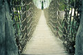 Sentosa rope bridge Royalty Free Stock Photo