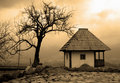 Sepia cottage and tree Stock Image