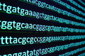 Sequencing of the genome in the laboratory. Royalty Free Stock Photo