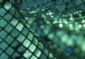 Sequined back abstract green and reflective background Royalty Free Stock Photo