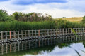 Serene floating boardwalk against reeds, hills and a blue sky Royalty Free Stock Photo