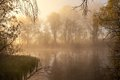 Serene misty morning on a lakeside summer Royalty Free Stock Images