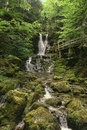 Serene Waterfall In The Forest Stock Photos