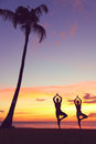 Serene yoga people training in sunset in tree pose meditating outdoors by beach ocean sea couple men and women working out Royalty Free Stock Photography