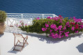 Series of santorini greece beautiful chair and pink flowers on terance Stock Images