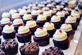 Series van leuke cupcakes Royalty-vrije Stock Foto