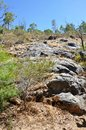 Serpentine Falls Granite Face Royalty Free Stock Photo