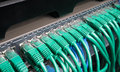 Server rack with green internet patch cord cables Royalty Free Stock Photo