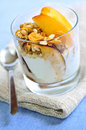 Serving of yogurt and granola Stock Images