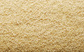 Sesame seeds Royalty Free Stock Photography
