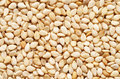 Sesame Seeds  Royalty Free Stock Photos