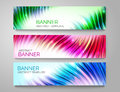 Set of abstract curve banners. Bright colorful wave. Vector design Royalty Free Stock Photo