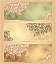 Set abstract floral banners with flowers shells se seaweed in green nacre beige olive brown gold colors hand draw Stock Images