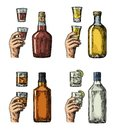 Set alcohol drinks with bottle, glass and hand holding gin, whiskey, tequila. Royalty Free Stock Photo