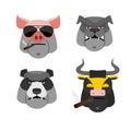 Set of angry animals head of a pig and bull bad bear and bull bulldog vector illustration Royalty Free Stock Photos