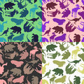 Set animal pattern. Color options from ornaments of wild animals Royalty Free Stock Photo