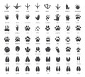Set of animal tracks vector Stock Photography