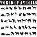 Set of animals silhouettes Royalty Free Stock Photo