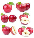 Set with apples Stock Photos