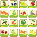 Set of art fruit icons Stock Images