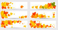 Set of autumn banners with colorful leaves back t to school vector illustration Royalty Free Stock Images