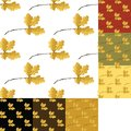 Set of autumn seamless pattern with oak leaf Royalty Free Stock Image