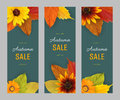 Set autumn vertical banners for sale