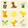 Set baby elements. Baby animals. Stock Images
