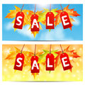 Set of backgrounds about the autumn sale word on red labels decorated with maple leaves Royalty Free Stock Image