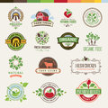 Set of badges and stickers for organic products vector food Royalty Free Stock Images