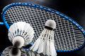 A set of badminton paddle and the shuttlecock studio shot Royalty Free Stock Photography