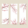 Set of banners with blossom sakura flowers. EPS 10