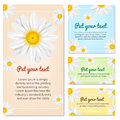 Set of banners with Chamomile. Vector illustration.